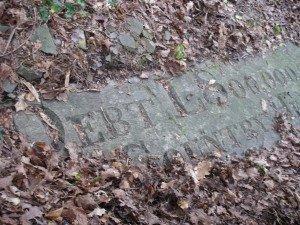 'National Debt £800,000,000' - inscription with encroaching leaf debris