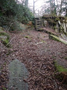 Carved rock. with wooden steps from Cragwood behind